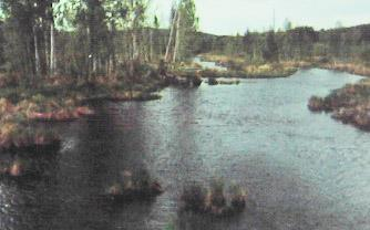 рыбалка на реке шитовской исток